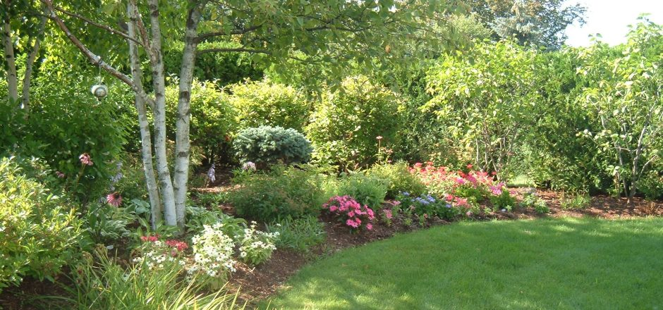 Treat yourself to a garden tour every day of the week