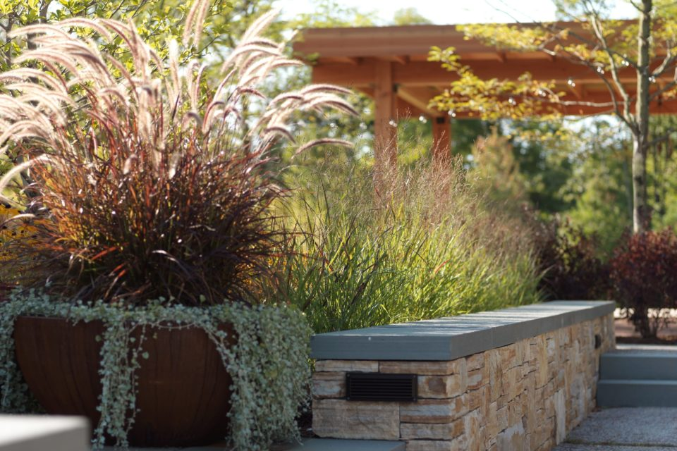 Commercial Planting - di Stefano Landscaping